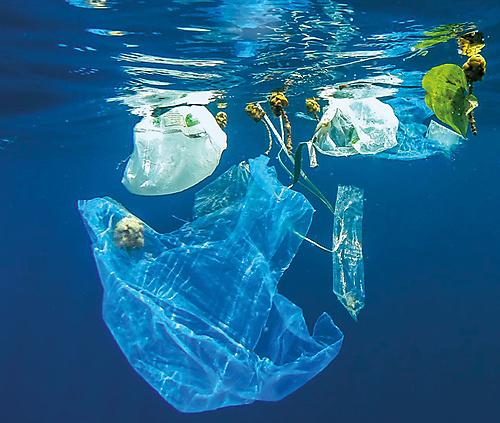 A plastic ocean - 1